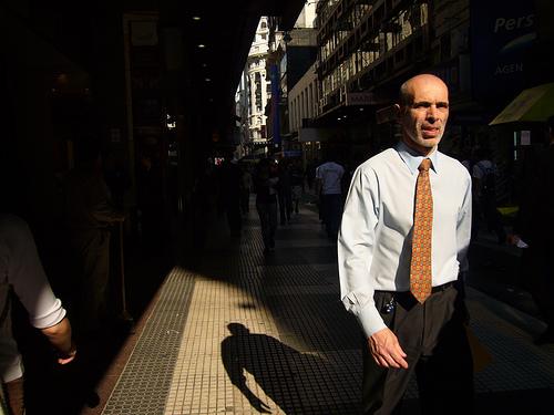(c) Fernando Cipriani